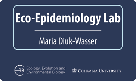 Eco-epidemiology lab logo. The PI of the lab is Maria Diuk-Wasser and it's located at the Department of Ecology, Evolution and Environmental Biology at Columbia University