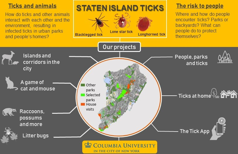 All the research projects taking place on Staten Island regarding ticks and tick-borne diseases.