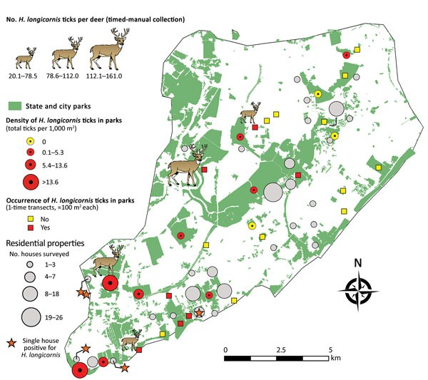 Map of Staten Island showing the parks and the number of ticks found in parks as well as the location of household surveys and the houses where we found longhorned ticks. We also show the number of ticks on deer that were captured for vasectomies and their location.